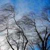О неблагоприятных метеорологических явлениях на 25 апреля 2017 года