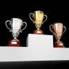Победители и призеры первенства Областной ДЮСШ по общей физической подготовке