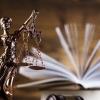 Конкурс на участие в образовательной программе «Юный правовед» на базе Международного Детского Центра «Артек»