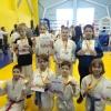 Борцы отделения единоборств спортивной школы стали победителями и призерами двух турниров по самбо и джиу-джитсу