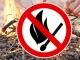 Ответственность за нарушение правил пожарной безопасности в лесах