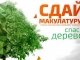 Всероссийский Эко-марафон Переработка «Сдай макулатуру — спаси дерево!»