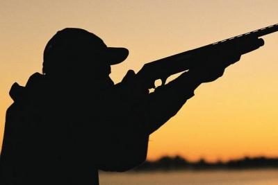 Новое в законодательстве: Об охоте и о сохранении охотничьих ресурсов