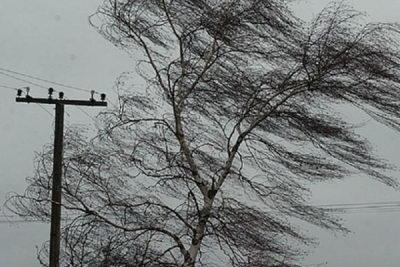 18-19 декабря на территории Тверской области ожидается усиление ветра