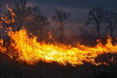 Несанкционированные поджоги сухой травы опасны!