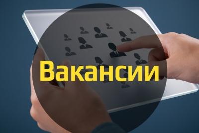 Возможность, в режиме реального времени знакомиться с актуальной информацией по трудоустройству в Тверской области