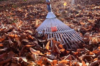 2 и 3 октября — субботники по приведению в порядок парка напротив школы № 2