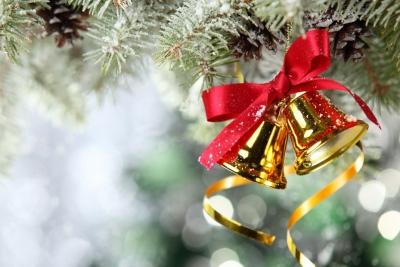 Поздравление с Новым годом и Рождеством от главы Зубцовского района Елены Николаевой