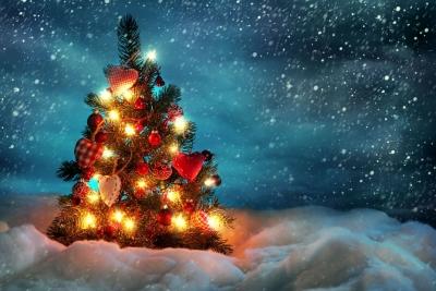 Поздравление с Новым годом и Рождеством от главы и Врио главы администрации ЗАТО Солнечный
