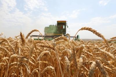 В Тверской области проводят сельскохозяйственную микроперепись