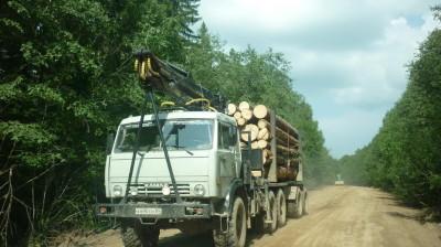 С лесозаготовителями есть договорённость о неиспользовании основной дороги